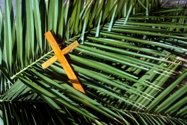 palm-sunday-images-2015-3